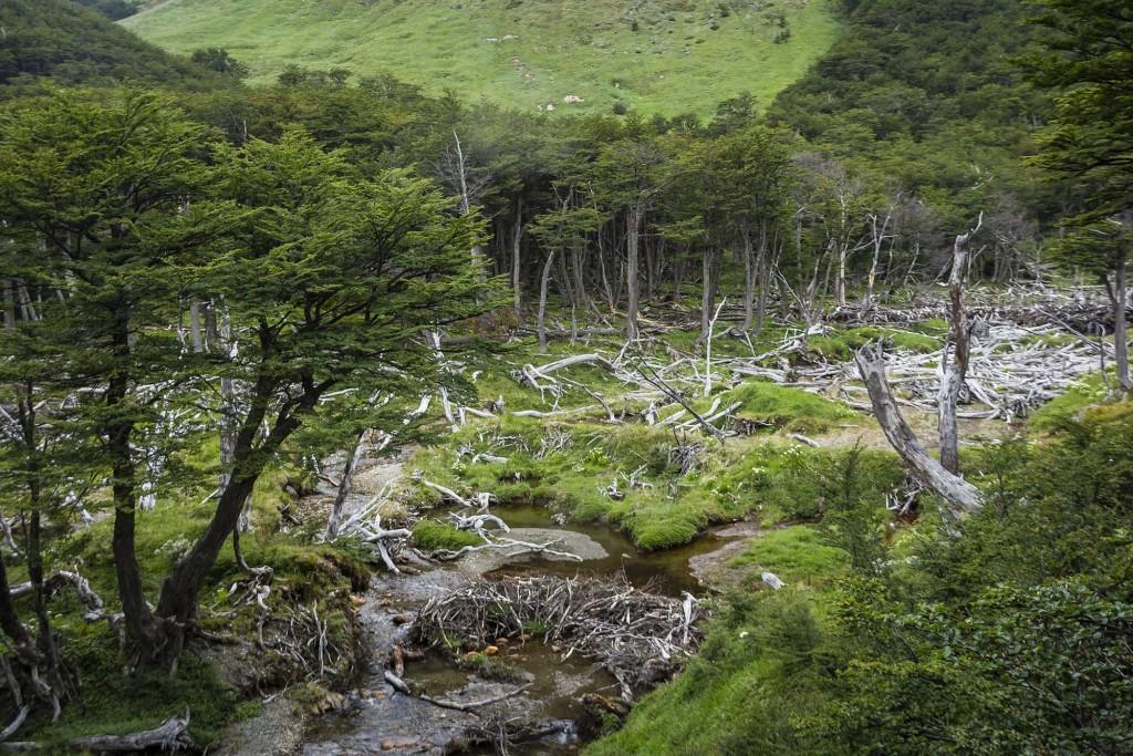 ushuaia-cascada-submarino-castoreira-pequena