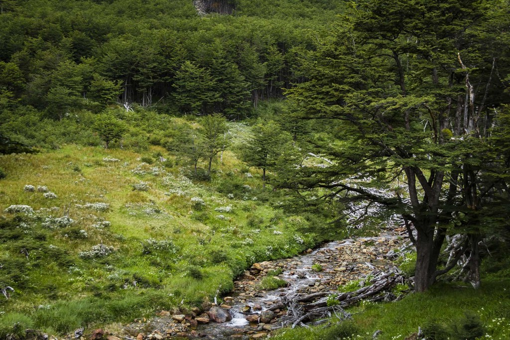 ushuaia-cascada-submarino-trilha03