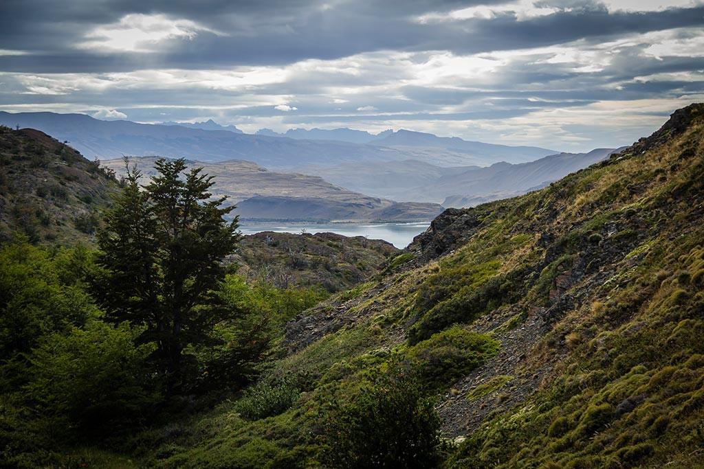 Torres del Paine - Trilha Los Cuernos para Chileno - Vista para o vale