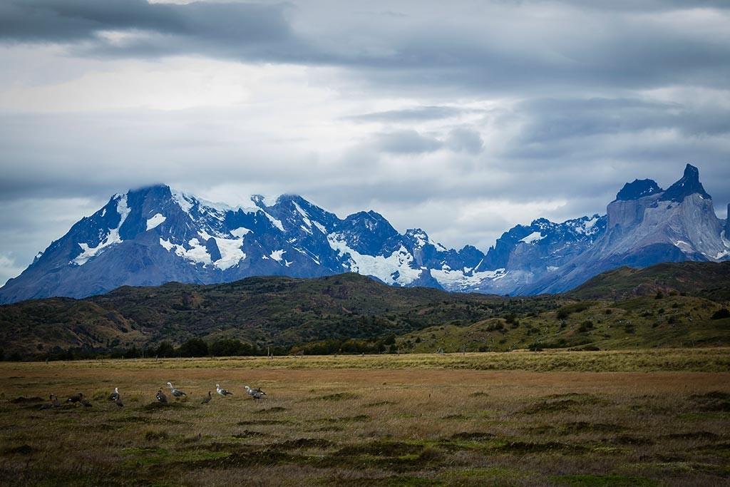 Torres del Paine - Trilha Sede Administrativa para Carretas - Vista Paine Grande e Cuernos