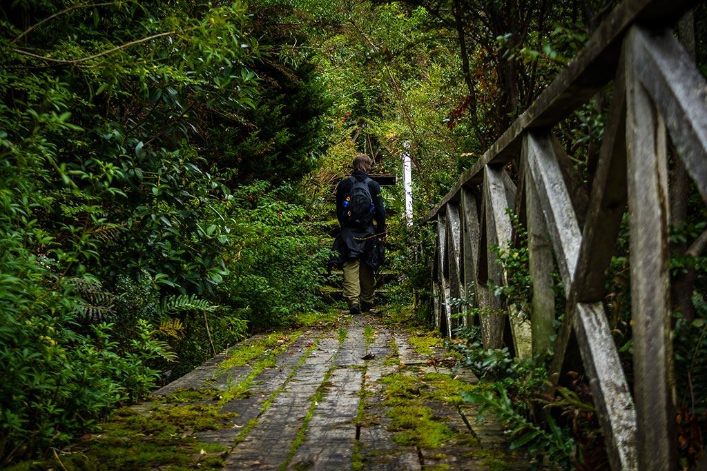 Carretera Austral - Caleta Tortel - Diego caminhando