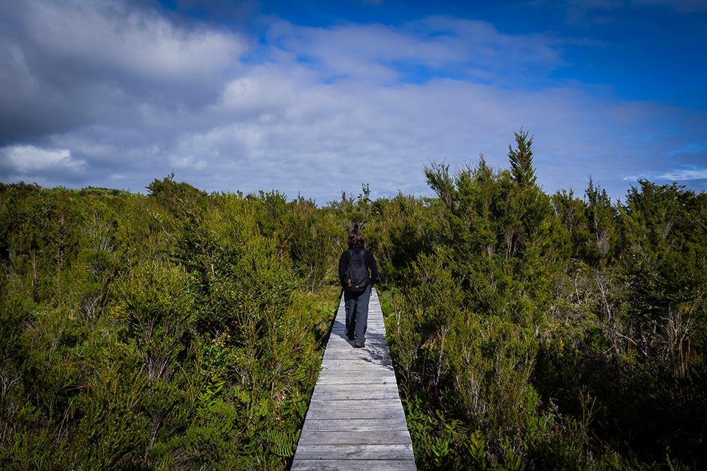 Isla de Chiloé - Parque Nacional Chiloé - Cucao - Bruna e as passarelas