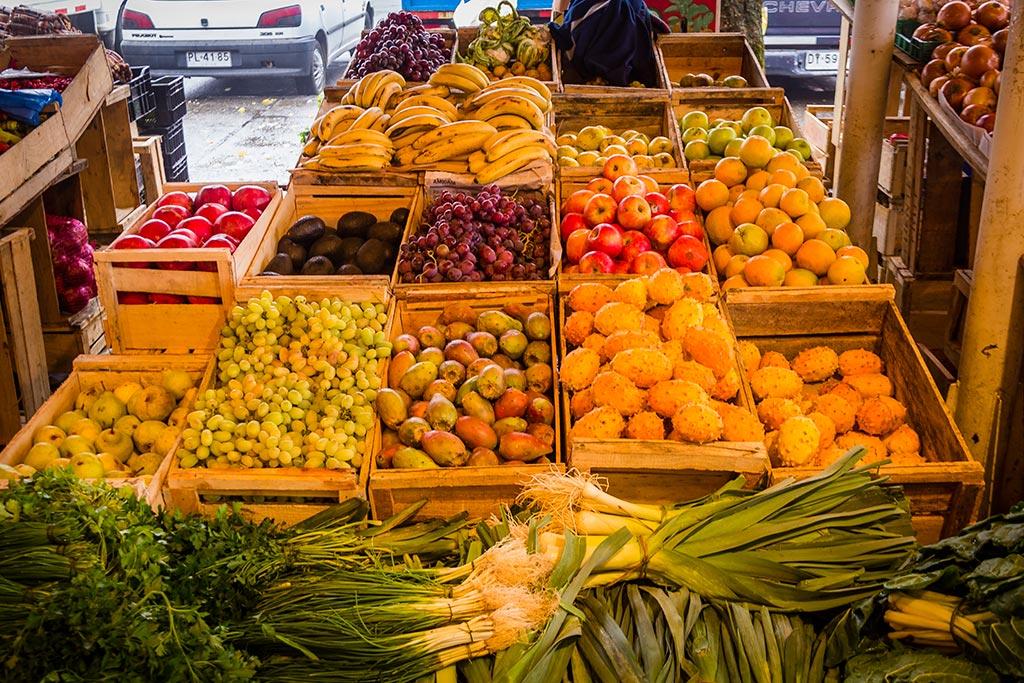 Valdivia - Feira Fluvial - Variedade de frutas e verduras