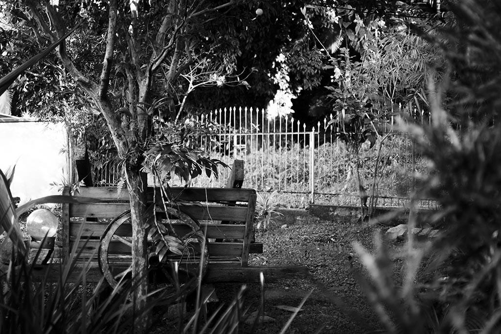 Jaraguá do Sul - Casa do Léo e do Rapha - Jardim
