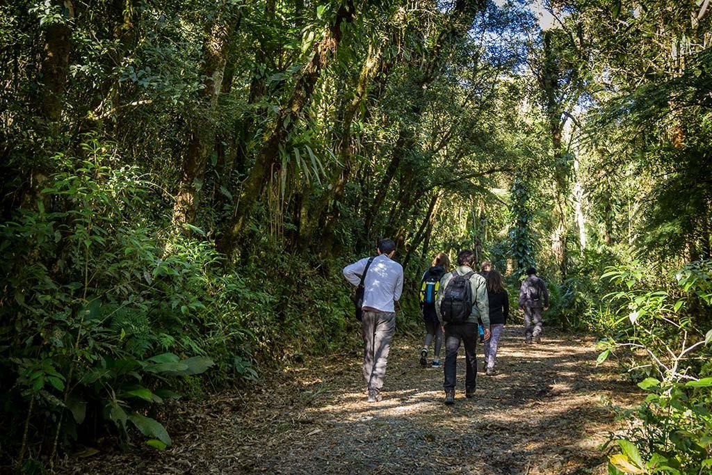Trekking Castelo dos Bugres - Início da Trilha