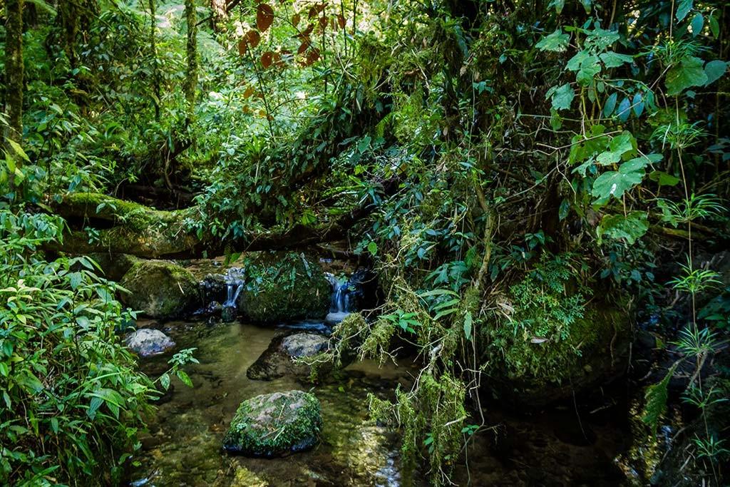 Trekking Castelo dos Bugres - Riacho 2