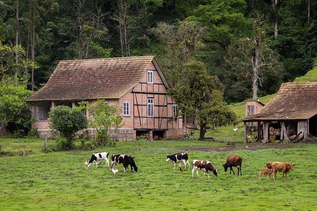 Circuito Vale Europeu - Dia 1 - Rio dos Cedros - Casa na área rural