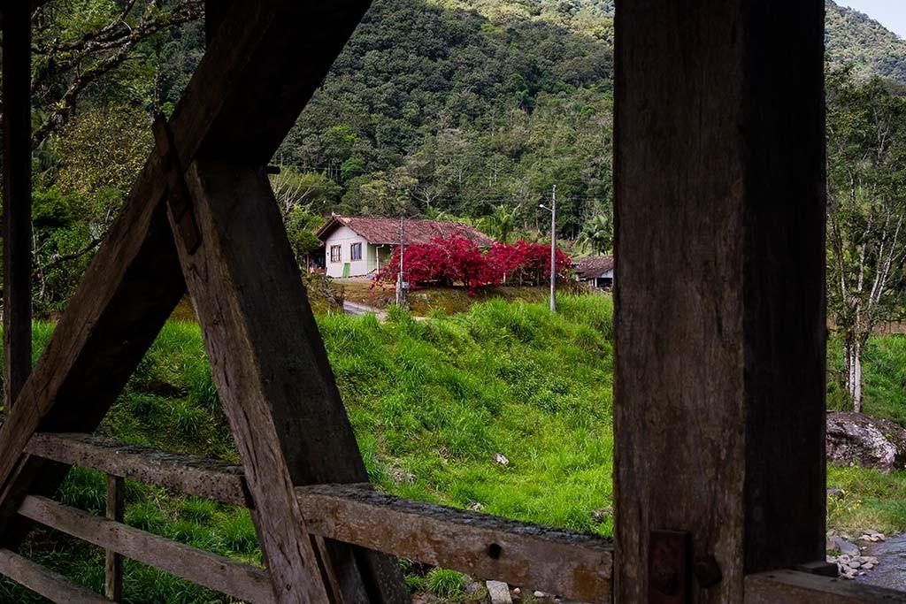 Circuito Vale Europeu - Dia 2 - Rio dos Cedros - Árvores floridas