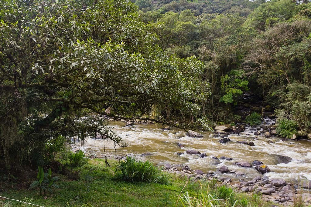Circuito Vale Europeu - Dia 2 - Rio dos Cedros - Junção de dois rios