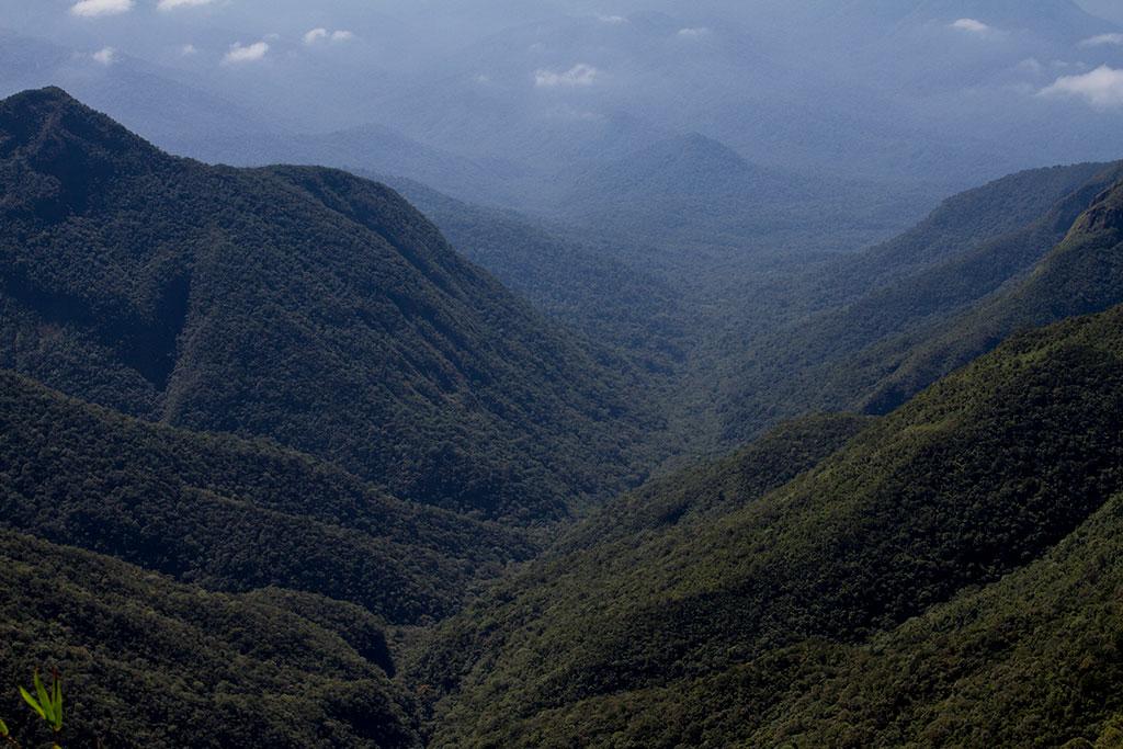 Vista para o Vale - Pico Paraná