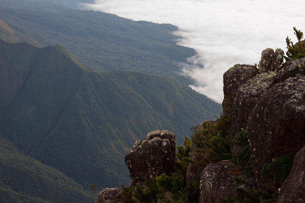 Vista trilha - Pico Paraná 08