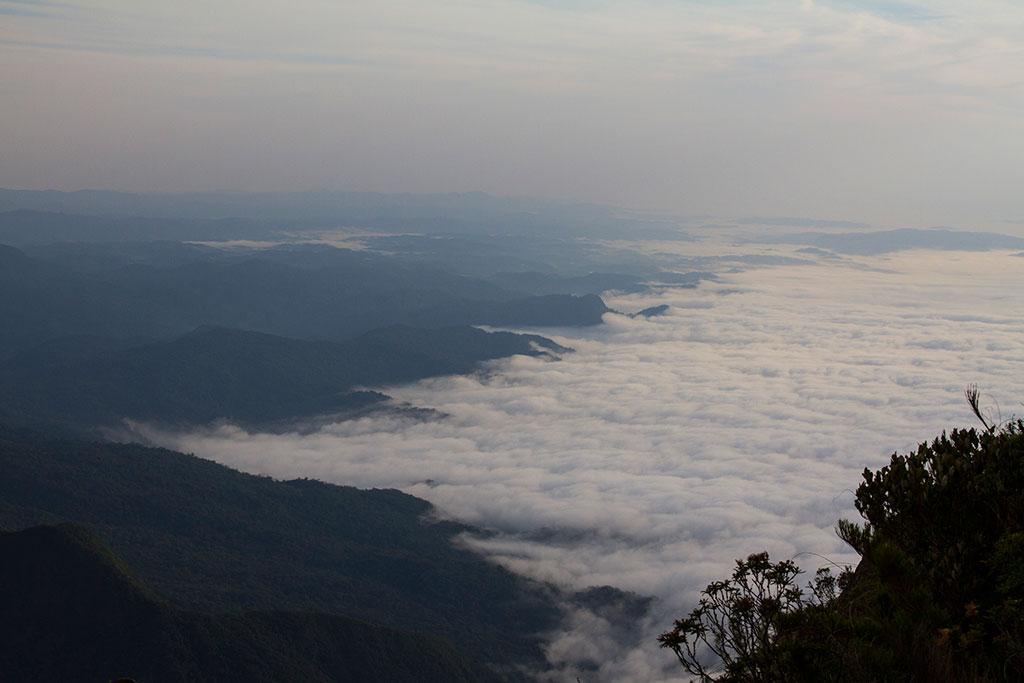 Vista trilha - Pico Paraná 10