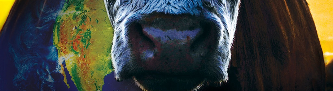 Cowspiracy – O segredo da sustentabilidade