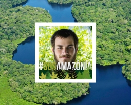 SOS Amazônia – É sério, mesmo?!